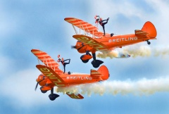 Wing Walkers Private Event